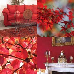 The Red Color In Home Decorating