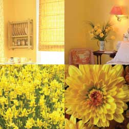 The Yellow Color In Home Decorating