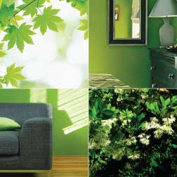 The Green Color In Home Decorating