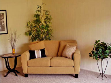 Decorate Living Room Walls on Home Decorating   Choosing The Right Color For Your Living Room Walls
